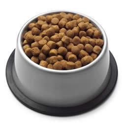 dog_food_250x251