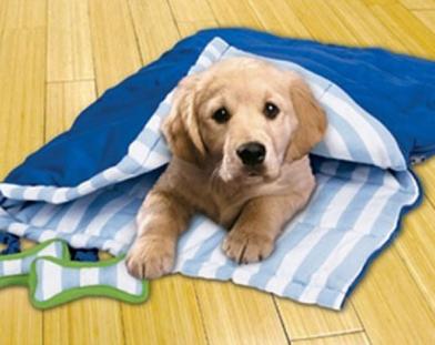 dog-sleeping-bag