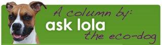 ask_lola_top21