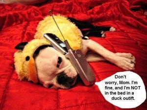 dog_on_phone