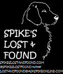 Spike's Lost & Found