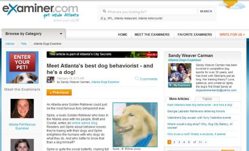 atlanta-dog-examiner